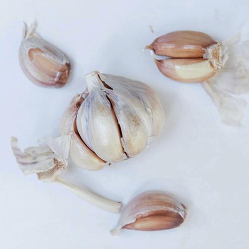 Garlic Packaging machines